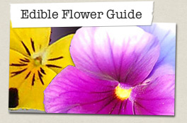 Edible flower guide