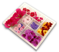 edible flowers custom selection